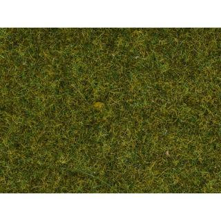 Divoká tráva, lúka, 9 mm, 50 g  NO07117