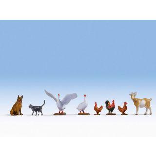 Hospodárske zvieratá  NO17903