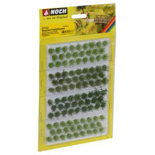 Trávové trsy  polní rostliny zelené odstíny, výška 6 mm