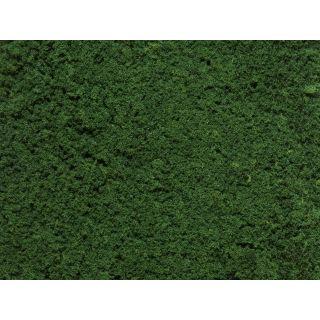 Foliáž tmavo zelená, 25 x 15 cm