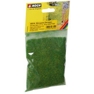 Statická tráva, okrasný trávnik, 2,5 mm, 20 g