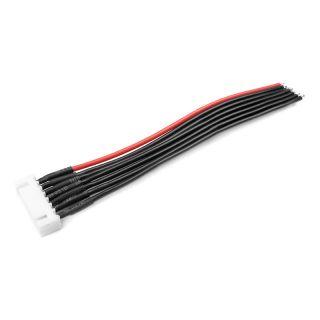 Balanční kabel 6S-XH samice 22AWG 10cm