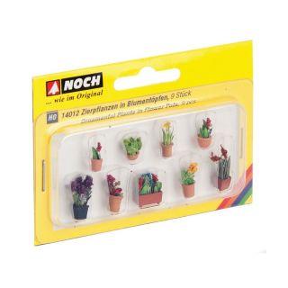 Okrasné rostliny v květináčích 14012