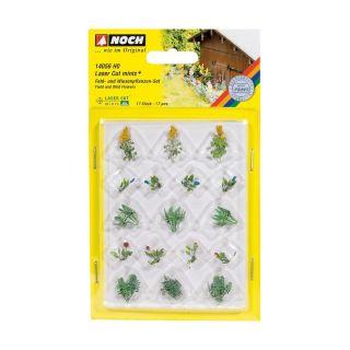 Poľné rastliny NO14056