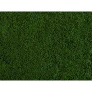 Foliáž tmavo zelená, 20 x 23 cm