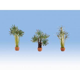 Palmy v kvetináčoch 3ks  NO14024