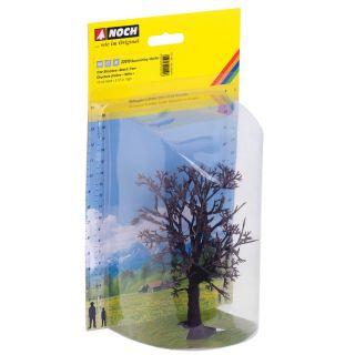 """Štruktúra stromu """"Bukový strom""""  NO22010"""
