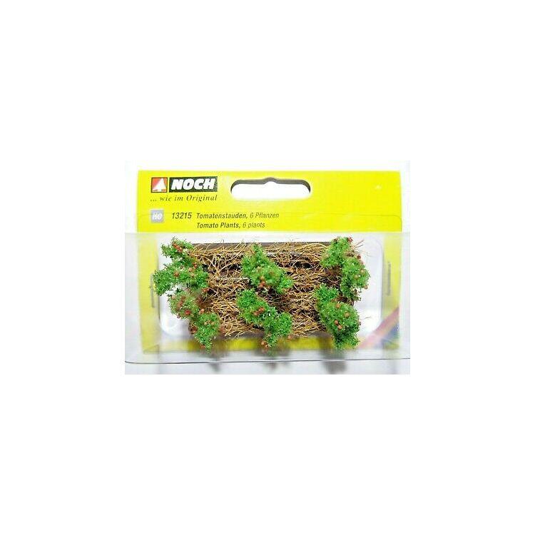 Paradajky, 3 x6cm, 6 rastlín  NO13215